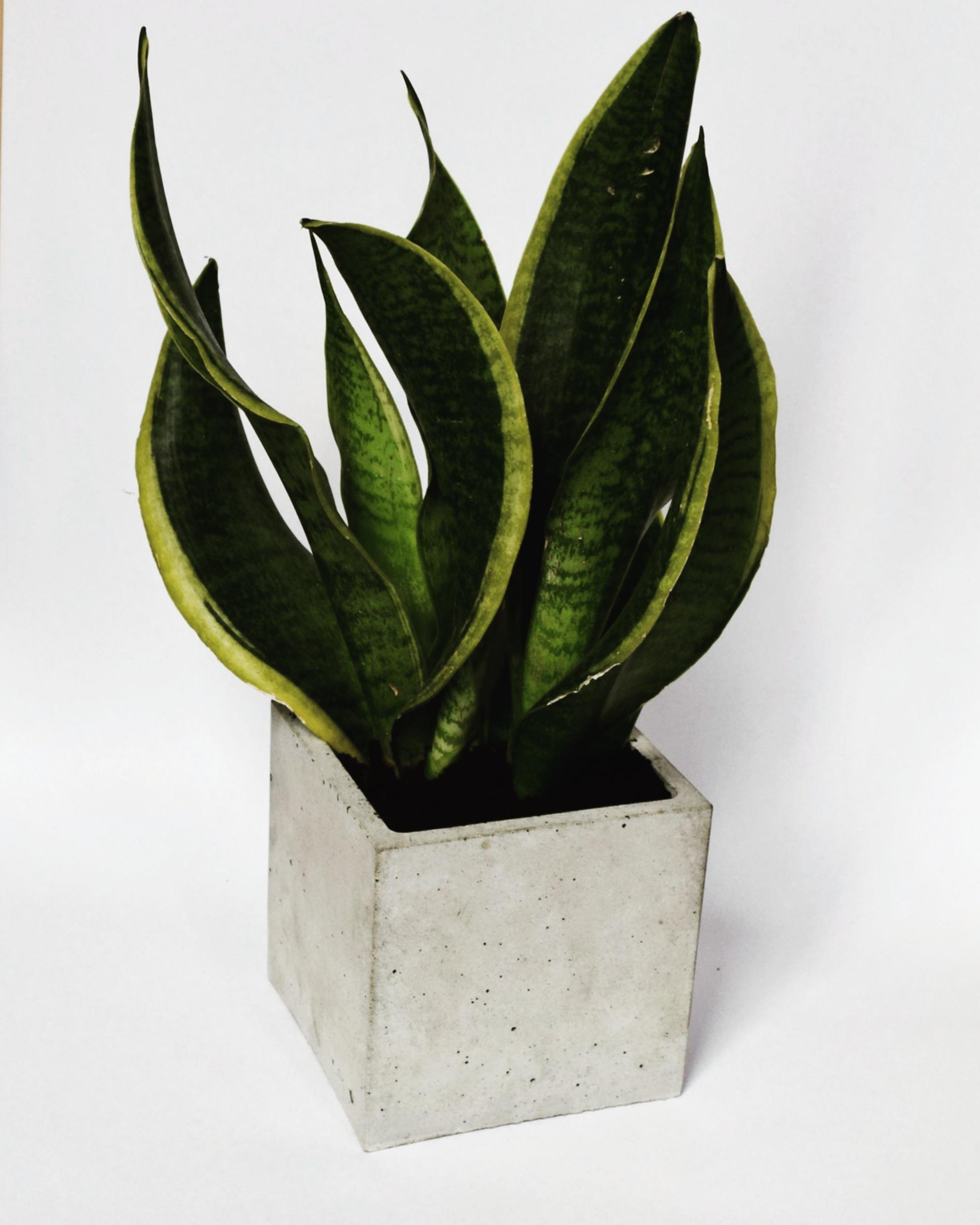 Osłonka betonowa 12 cm